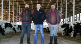 Two dairy farmers standing with a Plains Commerce banker in a cow barn
